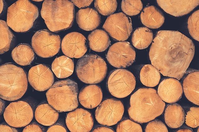 Chauffage bois et thermostat connecté